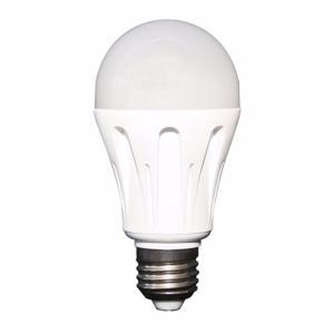 ampoule led steca led 6 12 24v. Black Bedroom Furniture Sets. Home Design Ideas